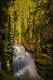 在约翰斯顿峡谷,班夫国家公园,加拿大的瀑布 免版税库存照片