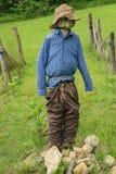 在约翰逊农场的稻草人水獭峰顶的  图库摄影