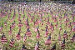 在纪念一国庆节的一个绿色领域的美国国旗在美国 免版税库存图片