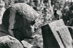 在纪念碑的乌鸦 库存图片