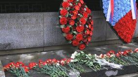 在纪念碑的花与下落的战士的名字 影视素材