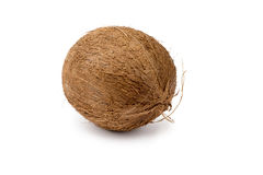 在纯净的白色背景隔绝的整个椰子 库存照片