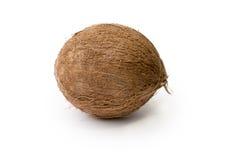 在纯净的白色背景隔绝的整个椰子 免版税库存照片