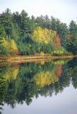 在纯净的秋天颜色反弹,在风景路线153的NH 库存图片