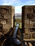 在纯正的城堡的大炮 免版税图库摄影