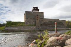 在纳尔瓦河的埃尔曼城堡 库存图片