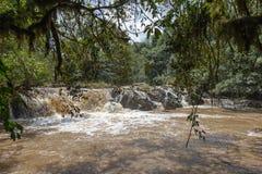 在纳库鲁附近的瀑布 汤普森秋天 免版税图库摄影