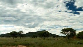 在纳米比亚大草原的移动的云彩 股票录像