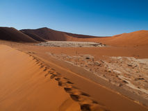 在纳米比亚沙漠红色沙丘沙子的脚印  库存图片