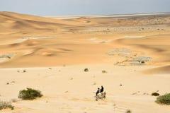 在纳米比亚的沙丘的对骑马术 库存照片