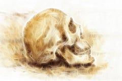 在纸和分数维作用的绘画头骨 库存图片