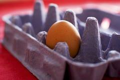 在纸板的鸡蛋 免版税图库摄影