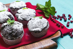 在纸的巧克力松饼洒与搽粉的糖 免版税图库摄影