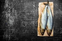 在纸的盐味的鲱鱼 库存照片