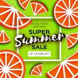 在纸的葡萄柚超级夏天销售横幅削减了样式 Origami水多的成熟红色柑橘切片 在绿色的健康食物 向量例证