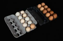 在纸盒和塑料盒的二十个鸡鸡蛋,隔绝在黑席子背景 免版税库存图片