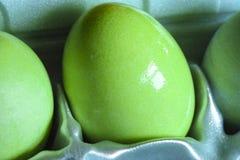 在纸盒的绿色复活节彩蛋 免版税图库摄影