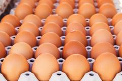 在纸盒箱子包裹的鸡蛋 库存图片