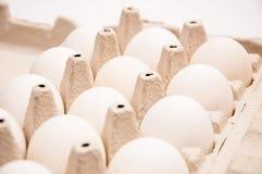 在纸盒箱子的十一个白鸡蛋 免版税库存照片