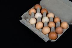 在纸盒箱子的十四个鸡鸡蛋,隔绝在黑席子背景 图库摄影