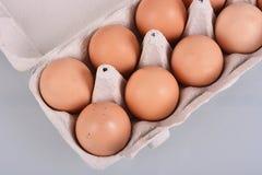 在纸盒箱子的鸡蛋 免版税库存图片