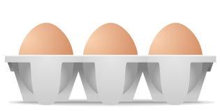 在纸盒蛋盒的鸡鸡蛋 库存例证