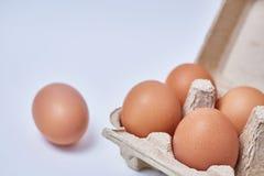 在纸箱的五个鸡蛋 免版税库存图片