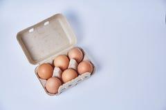 在纸箱的六个鸡蛋 库存图片