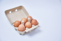 在纸箱的六个鸡蛋 免版税库存照片
