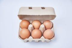 在纸箱的六个鸡蛋 免版税图库摄影