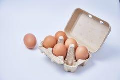 在纸箱的六个鸡蛋 库存照片