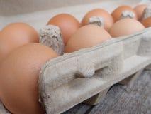 在纸箱的鸡蛋 库存图片