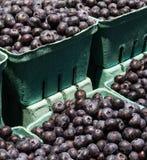 在纸篮子的新鲜的有机蓝莓在国家农厂市场上 免版税库存照片