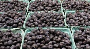 在纸篮子的新鲜的有机蓝莓 库存图片