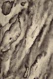 在纸纹理的抽象水彩作为背景 在乌贼属吨 免版税库存图片