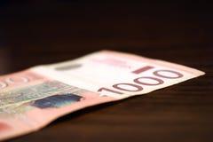 在纸,钞票的塞尔维亚金钱1000丁那价值 库存照片