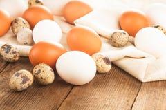 在纺织品的鸡蛋 库存照片