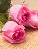 在纺织品的三朵美丽的新鲜的玫瑰 免版税库存照片