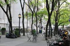 在纽约公立图书馆大厦前面 免版税库存照片