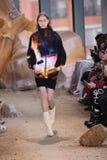 在纽约时尚星期期间,模型走跑道在拉科斯特展示 免版税库存照片