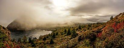 在纽芬兰,加拿大的东海岸足迹 库存图片