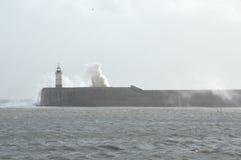 在纽黑文港口的灯塔 免版税库存照片