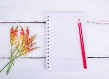 在线和一支红色铅笔的空的笔记本 图库摄影