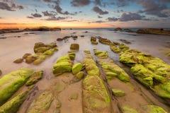 在线岩层的绿色青苔和日落背景 库存图片