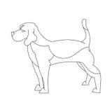 在线的小猎犬狗 免版税库存图片