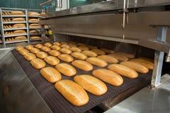 在线的热的被烘烤的面包 免版税图库摄影