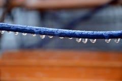 在线的雨珠 免版税图库摄影