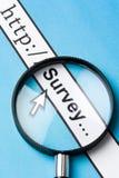 在线调查 免版税图库摄影