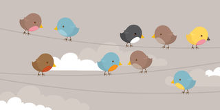 在线路的鸟 免版税库存照片