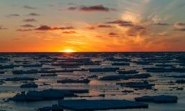 在组装冰浮冰的金黄日落,南极洲 库存图片